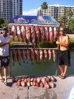 sarasota-charter-fishing-pictures-14
