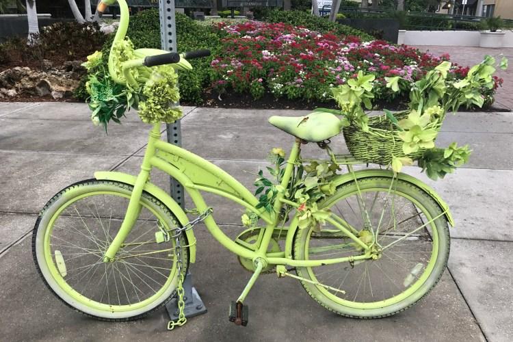 Bikes in Downtown Sarasota
