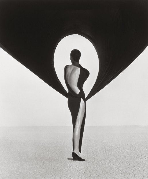 Herb Ritts (American, 1952 - 2002) Versace Dress, Back View, El Mirage, 1990 Gelatin silver print Image: 61 x 50.8 cm (24 x 20 in.) Framed: 76.2 x 63.5 cm (30 x 25 in.) The J. Paul Getty Museum, Los Angeles, Gift of Herb Ritts Foundation, 2012.23.22 © Herb Ritts Foundation