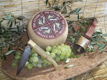 prodotti sardi formaggi