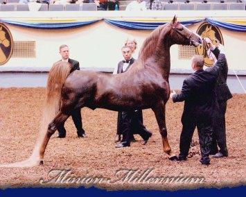 Minion Millennium