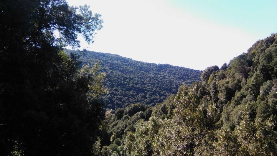 La montagna di Desulo