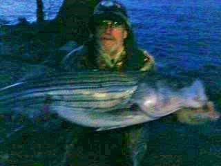 Sarges Bait and Tackle Chesapeake Bay Fishing - Striper