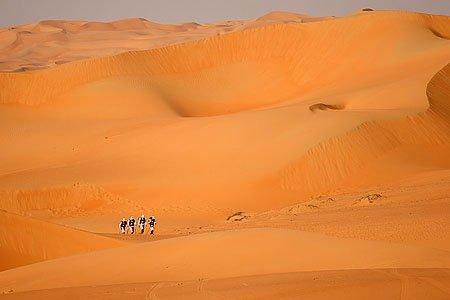 The Desert Trek. All photos courtesy Mike Bitton.