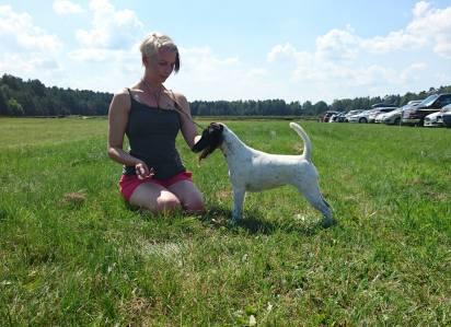 Sally Justiina (Chic Choix Who Cares Challenger) 2 years © Karri Heino