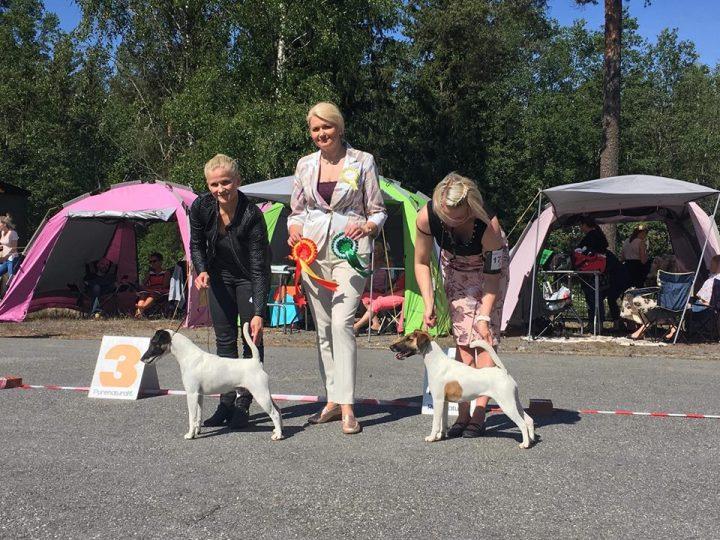 Uhma BOB, CC BOS & CAC, photo: Jenny Lindström
