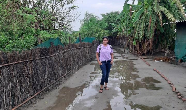 Beejom Farms, Noida
