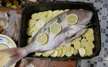 PappaVera pesce SaritaLibre.it_14