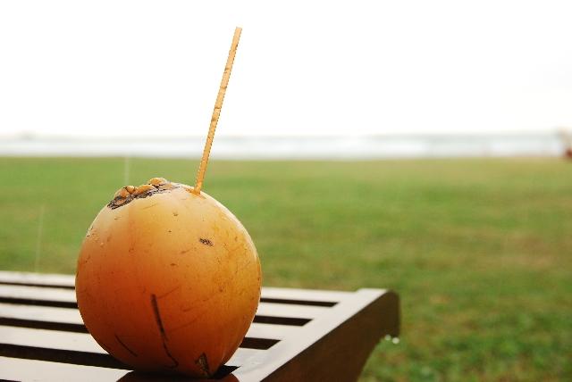 ココナッツオイルダイエットのやり方と効果!