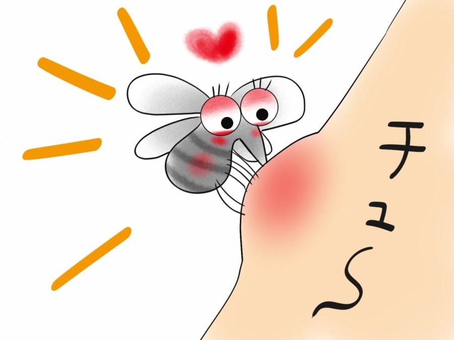 虫刺され薬の選び方とおすすめ5選【市販薬】はコレ!