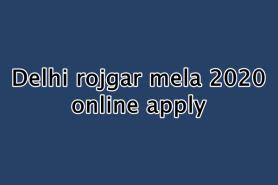 दिल्ली रोजगार मेला 2020 : ऑनलाइन आवेदन,  उद्देश्य, मुख्य बातें, पात्रता, दस्तावेज और विशेषताएं
