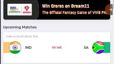 dream11 live point