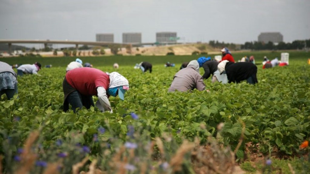 migrant worker bharti 2020