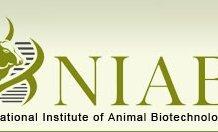 National Institute of Animal Biotechnology (NIAB)