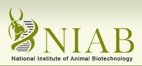 National Institute of Animal Biotechnology (NIAB)