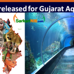 Gujarat aquatic park