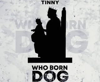 Download MP3: Tinny - Who Born Dog (Yaa Pono Diss)