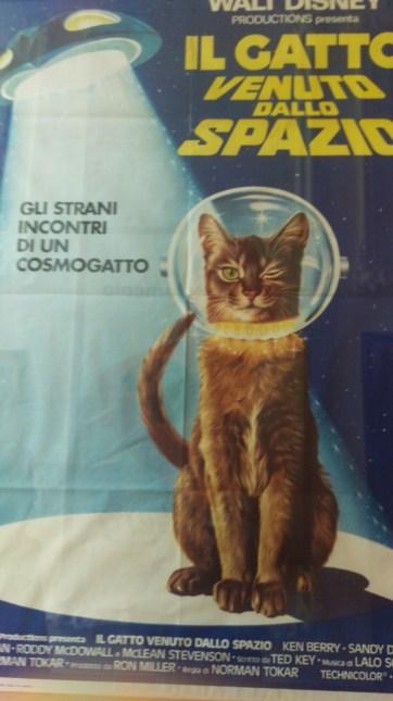 pic-story-amsterdam-kattenkabinet-01