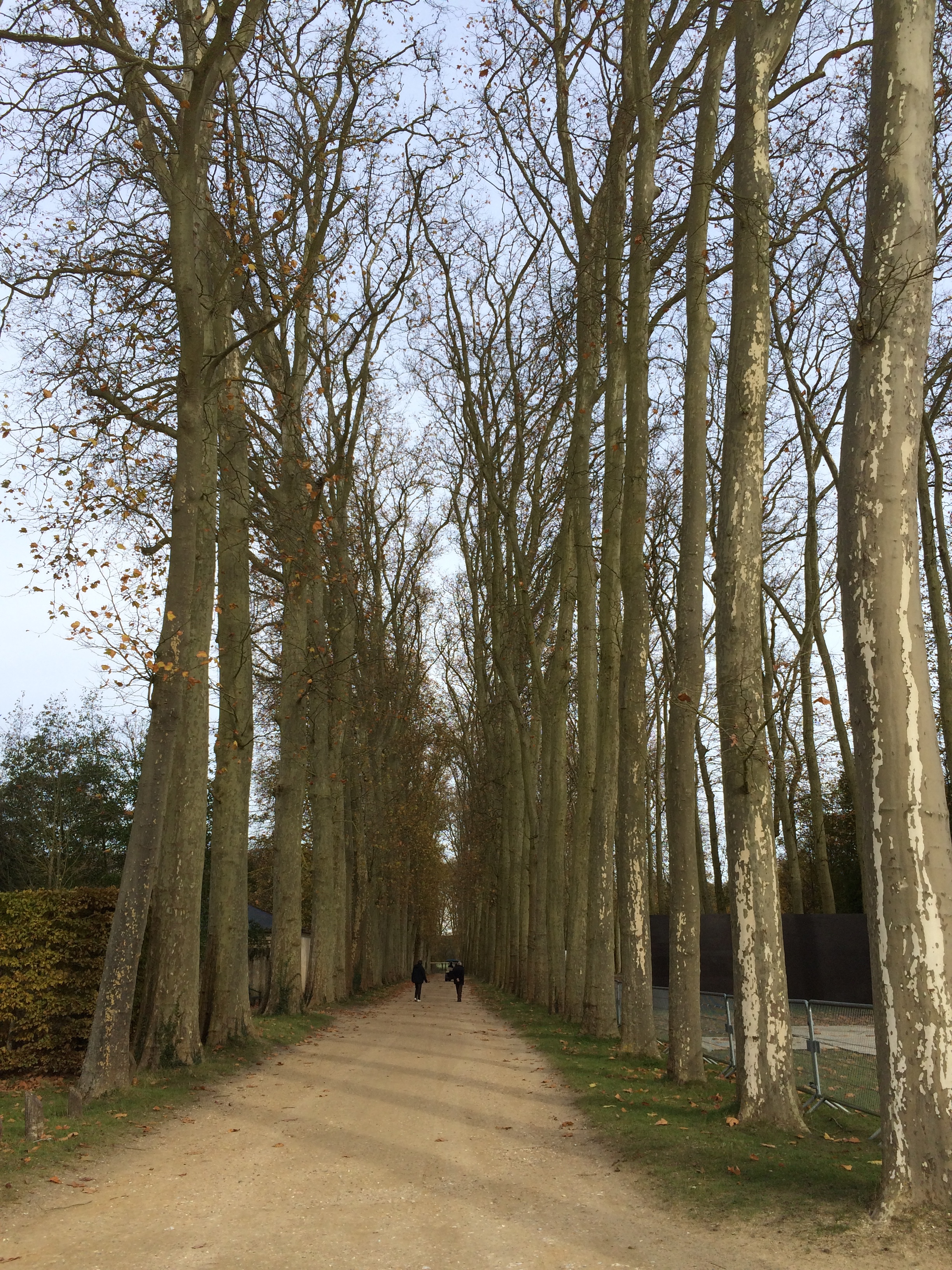 Chateau du Versailles, walk towards the Summer Palace