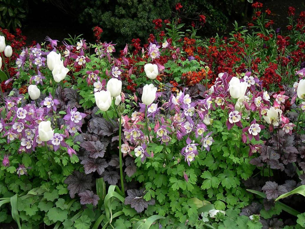 Gardens in Hyde Park near Lancaster Gate, London