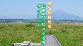 【案内】 7/8 サロベツ湿原 木道ガイドツアー開催!