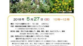 【案内】5/27(日)外来種除去イベントを開催します