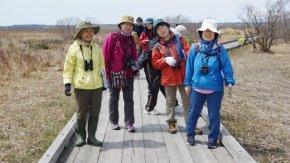 4/29(水・祝 昭和の日)オバパワークラブさんによる早春木道観察会が開催されます。