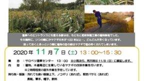 【案内】11/7(土)ボランティア募集!湿原センター周辺の景観維持作業を行います
