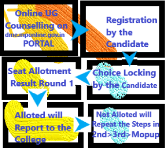 MP Online Flow Chart