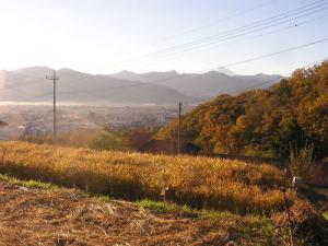 稲刈り2015.11