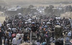 シリア難民1