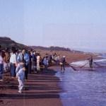 鵜の浜温泉~春の観光地引網