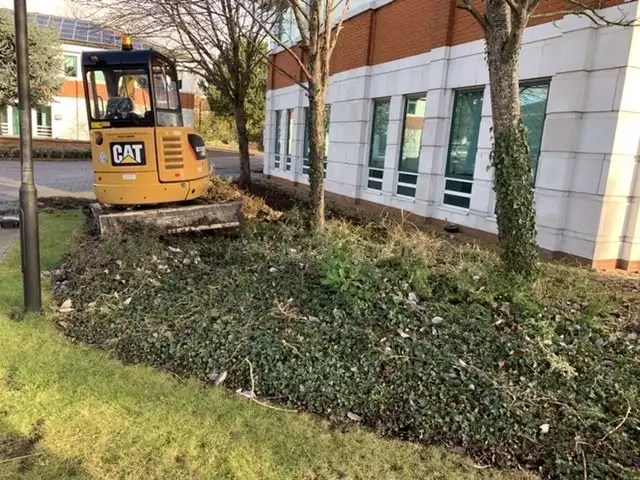 Shrub bed removal before