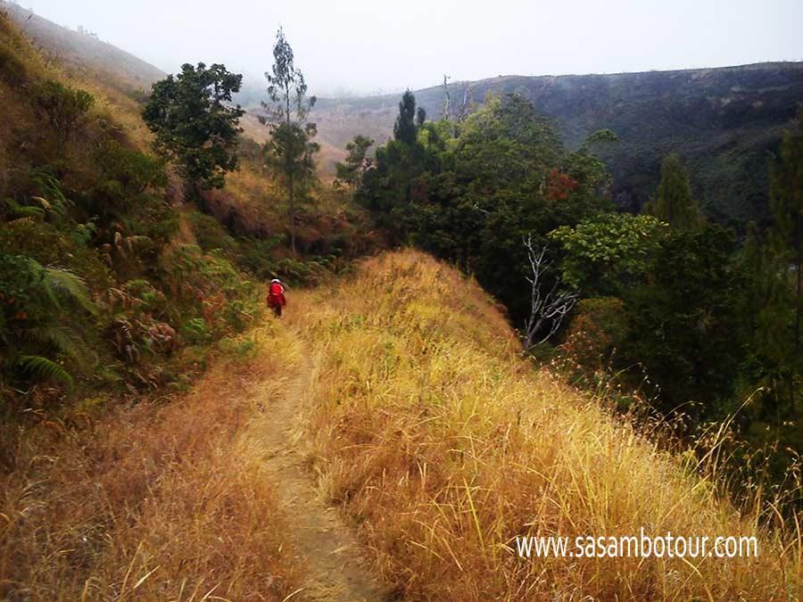 Open Trip Rinjani 2016