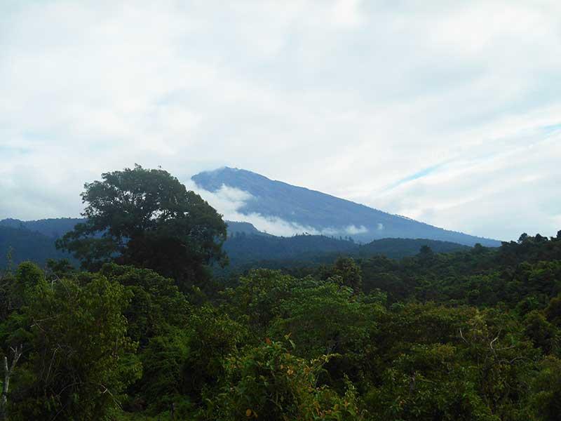 tetebatu lombok timur