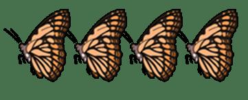 4-butterflies