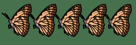 5-butterflies