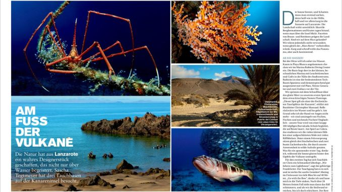 Lanzarote travelogue of mine in DIVING 09 / 2015.