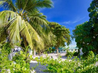 Native island in the Maldives: Here can make a cheap dream vacation! Photo: Sascha Tegtmeyer