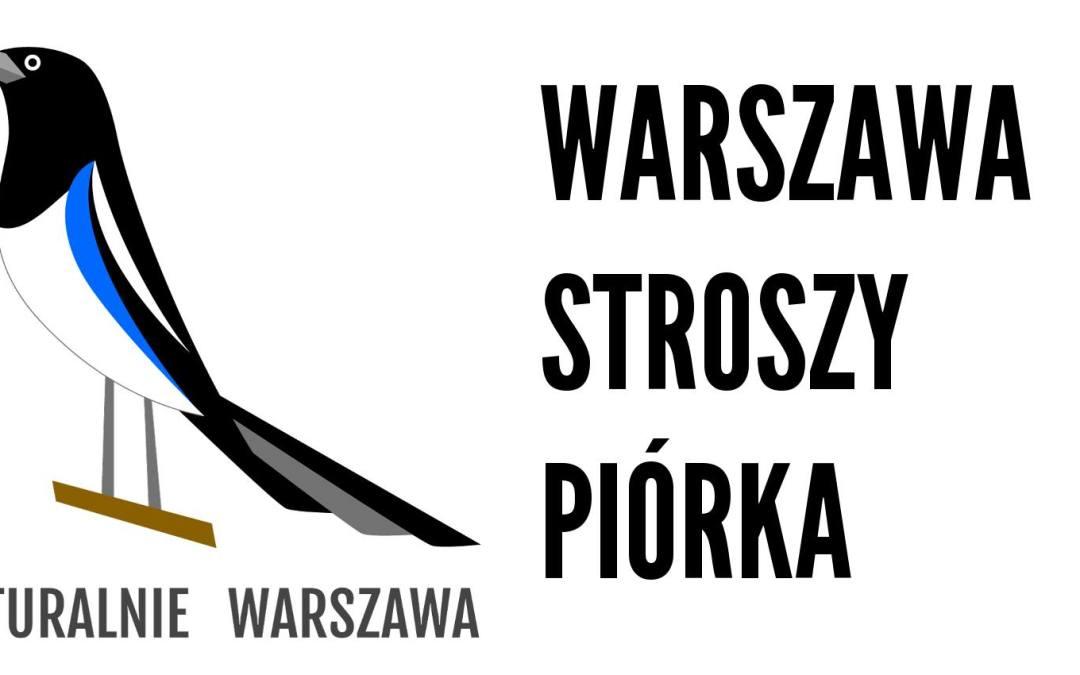 2018-03-11: Niezłota kaczka – spacer ornitologiczny po Skaryszaku