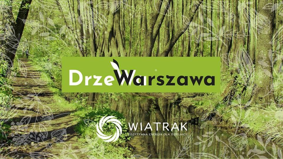 2018-06-23: DrzeWarszawa na Saskiej Kępie: spacer szlakiem pomników przyrody