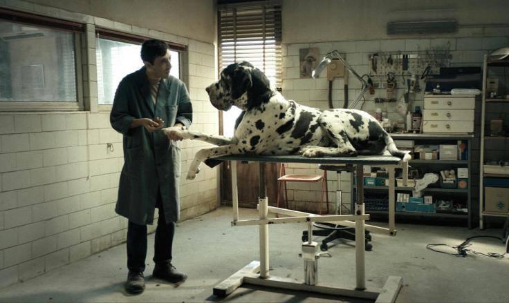 "2018-10-05: KINO KĘPA: ""Dogman"""