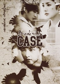 Break the Case