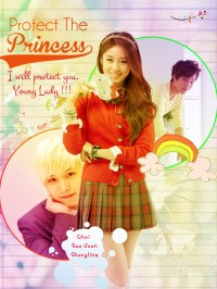 Protect the Princess