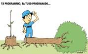 08/03/2001 - AMA atrasa a poda das árvores