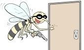 Muitos casos de dengue em londrina.