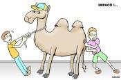 Camelôs se recusam a deixar as ruas de londrina.