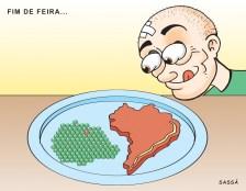 Expo 2004 + Fome zero.