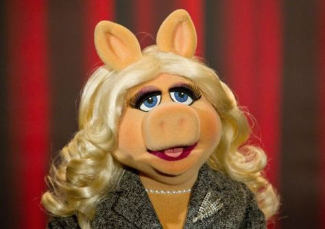 Miss Piggy Eyelashes