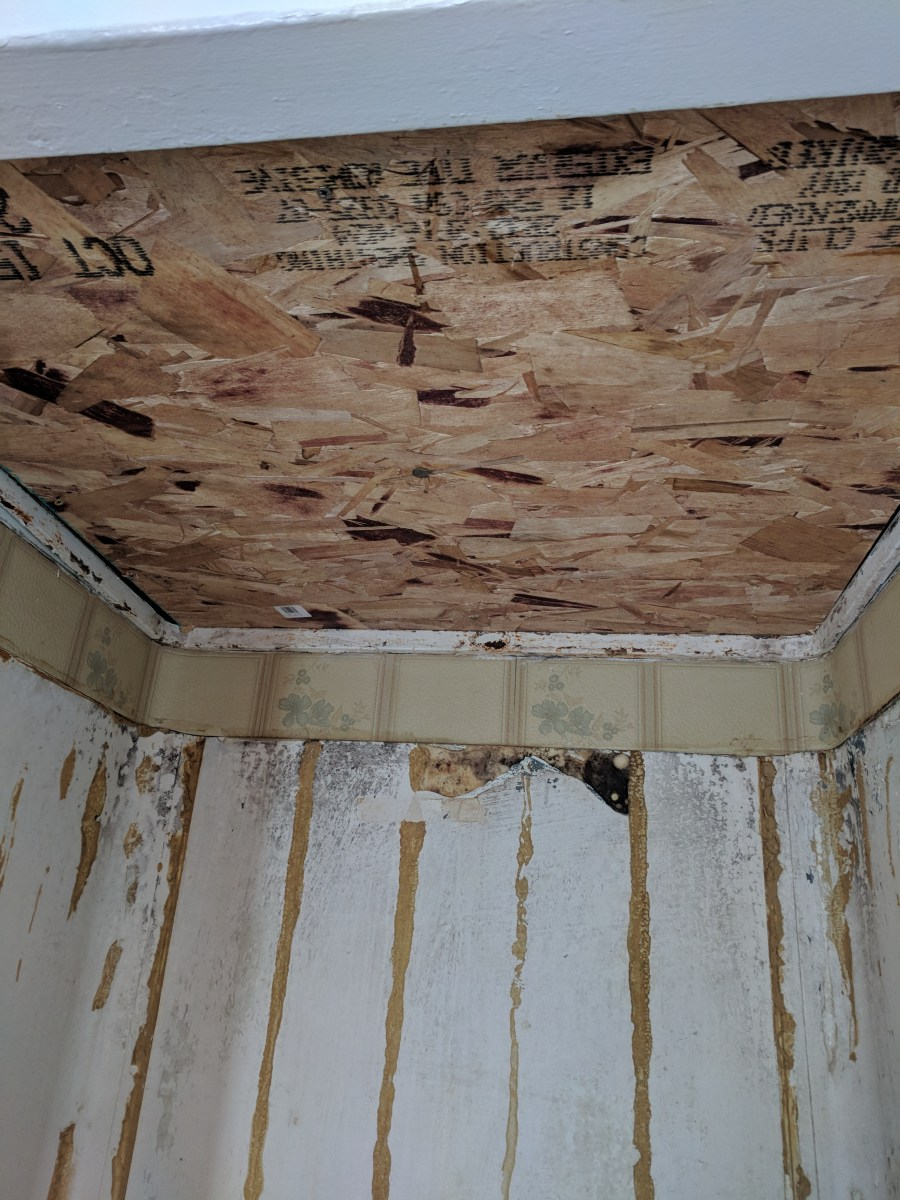 Bathroom shower ceiling osb